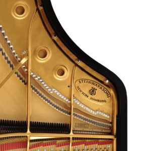 Photo of the interior of a Steinway grand piano